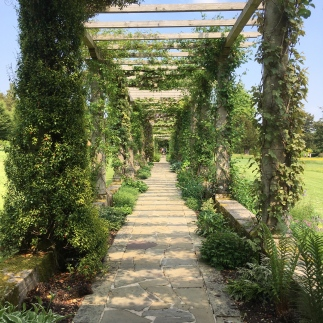 Pergola in the college gardens